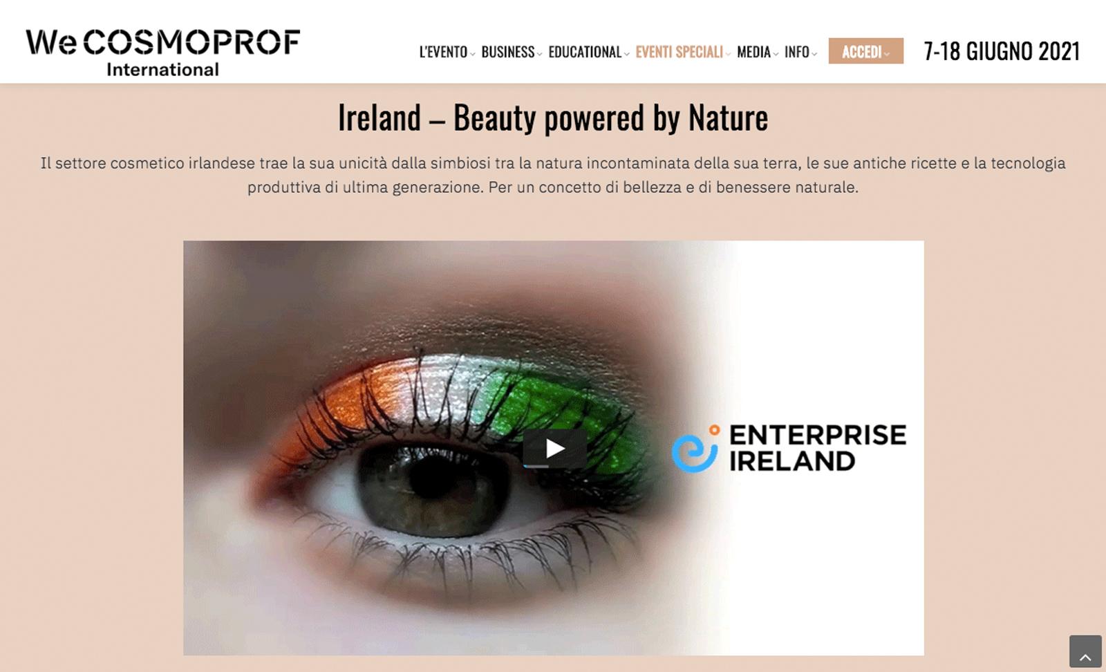 Enterprise Ireland – Video